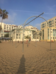 Find your own Muscle Beach